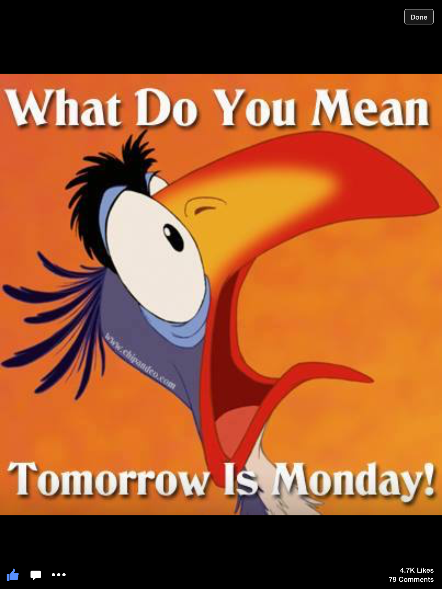 Monday Blues Meme Meaning