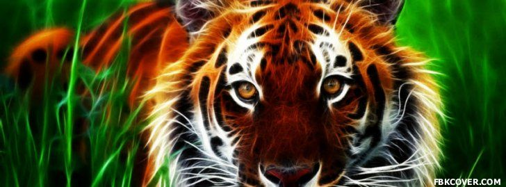 Download Tiger 3d Facebook Cover For Free Facebook Covers