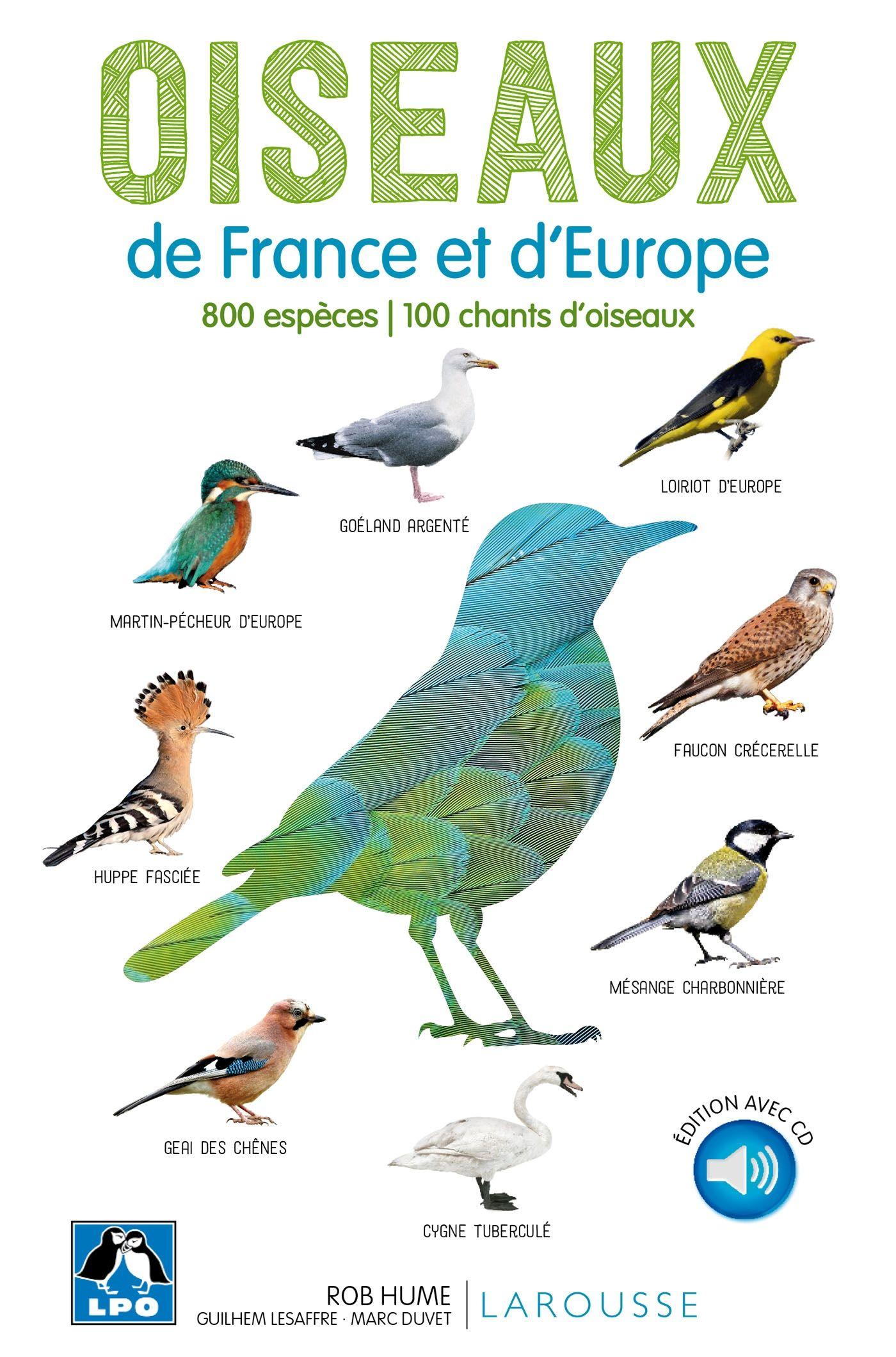 Guide des oiseaux d'Europe nouvelle édition Oiseaux de