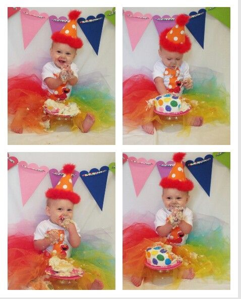 Sesame street first birthday cake smash pictures