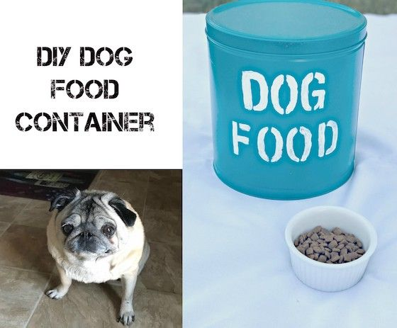Diy Dog Food Container Dog Food Container Dog Food Recipes Dogs