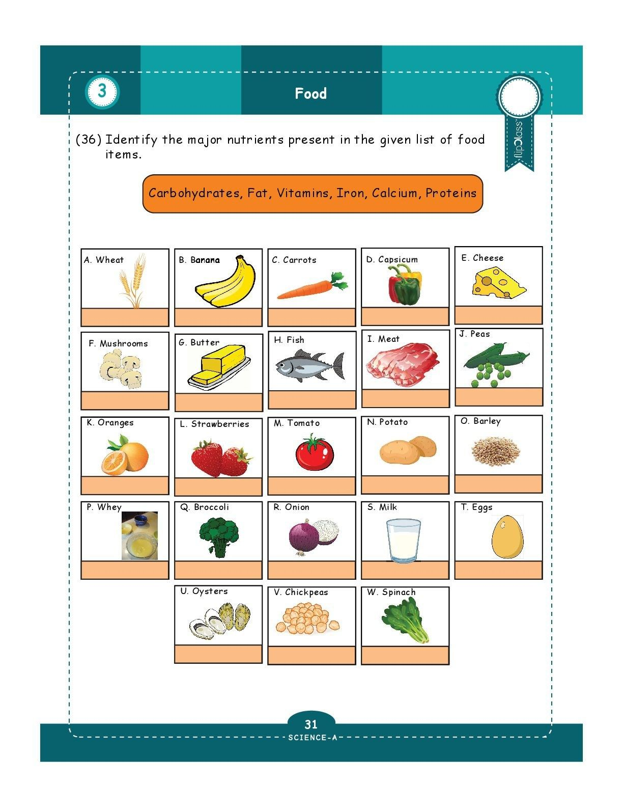 52 Basic Math Worksheets Images
