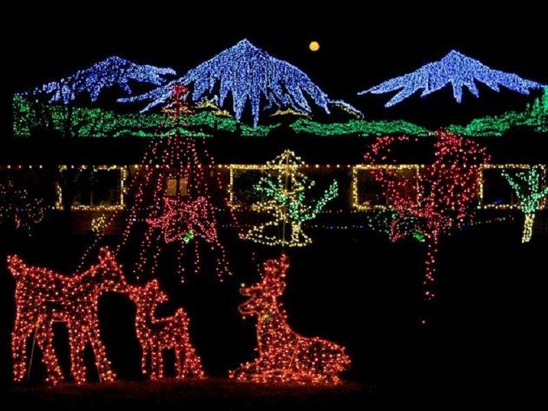 fabulous red deer bellevue botanical gardens christmas lights outside interior design giesendesign - Bellevue Christmas Lights