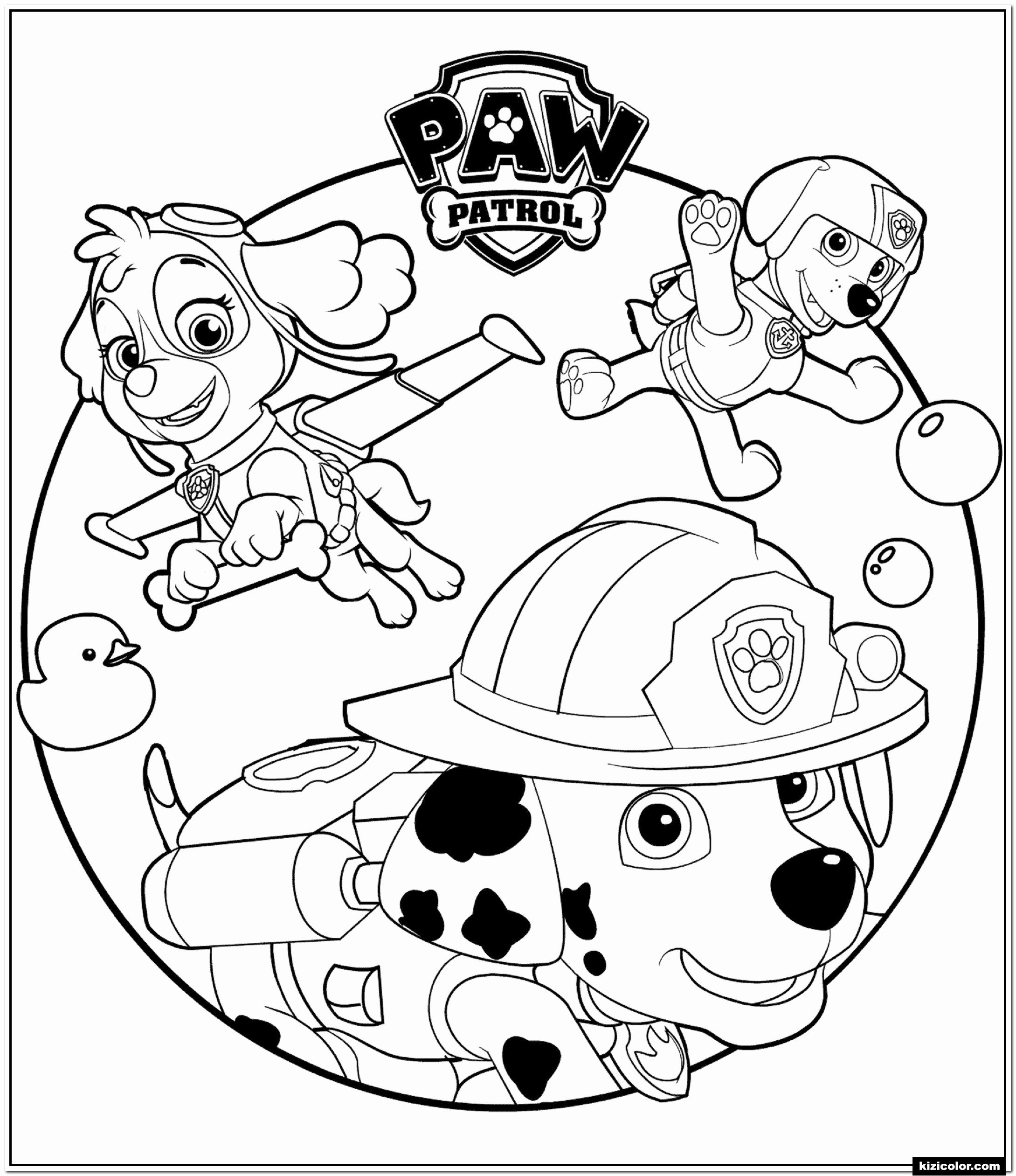 Coloring Animals Youtube Paw Patrol Coloring Paw Patrol Coloring Pages Free Coloring Pages