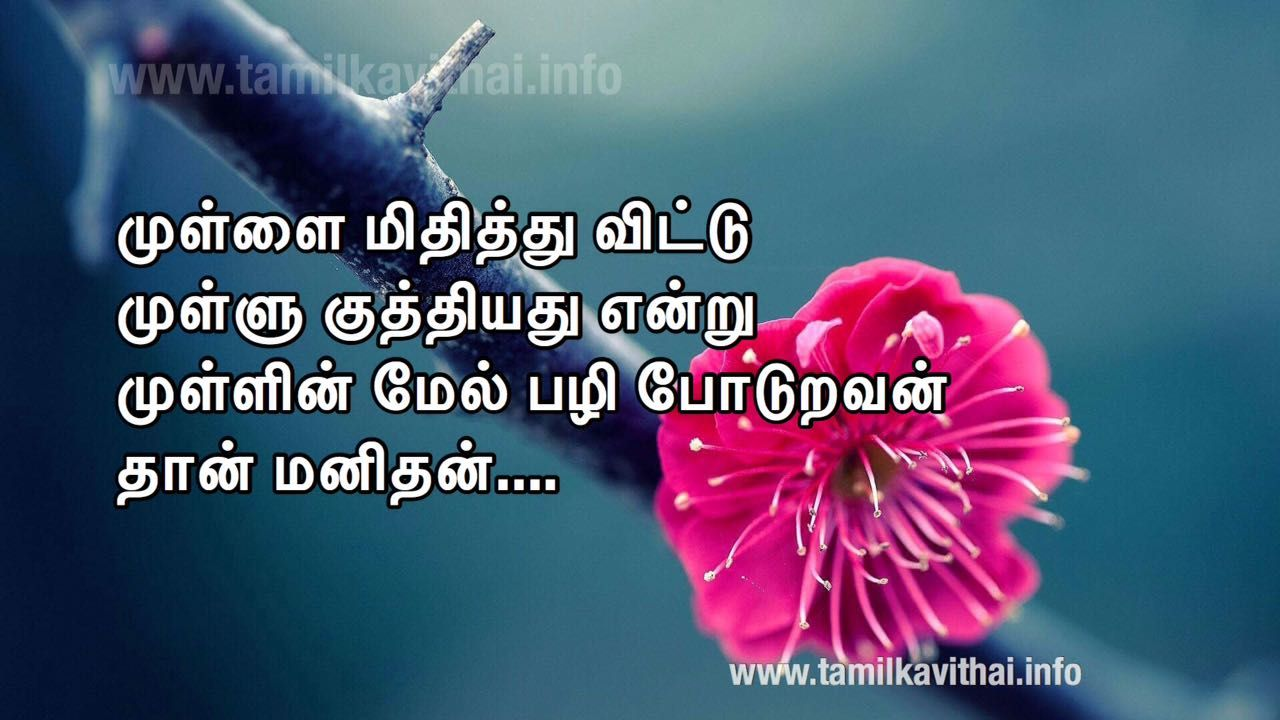One Side Kadhal Kaviin Tamil Google Search Tamil Love Quotes One Sided Love
