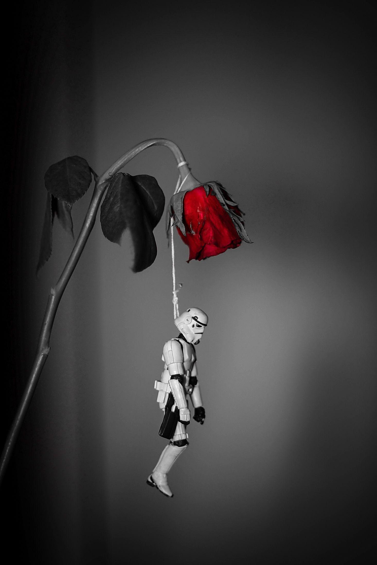 Love Kills © Tony Leone