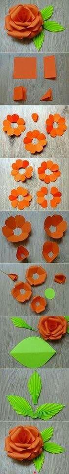 Flor anaranjada 🌺🌺🌺