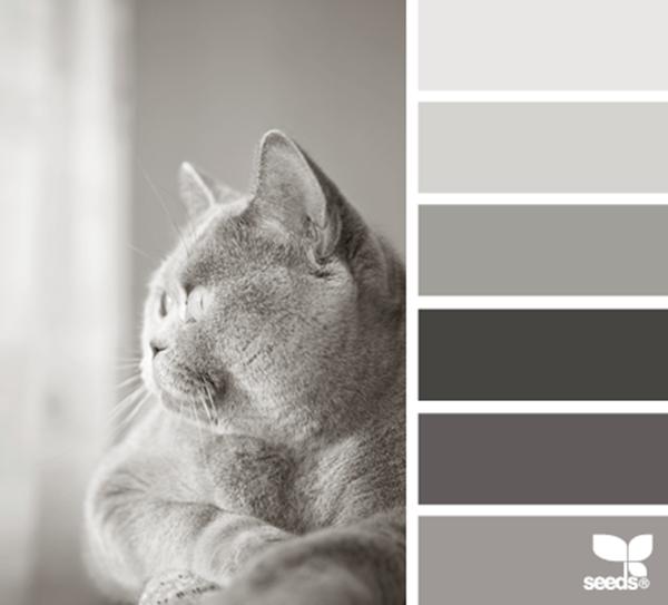 LAB MAISON: INSPIRED BY DESIGN SEEDS®: Feline Tones