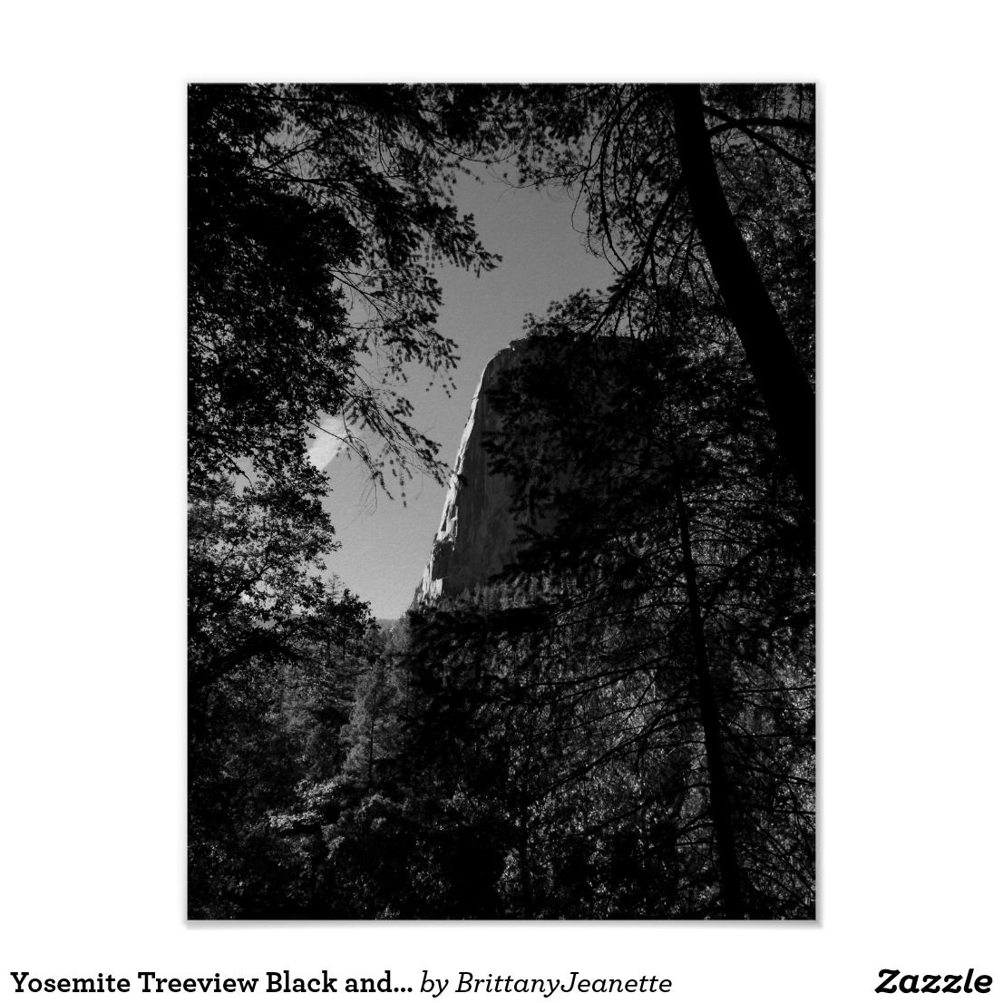 Yosemite National Park Black And White: Yosemite Treeview Black And White Poster