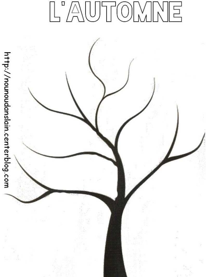 Ides De Dessin Arbre Sans Feuille A Imprimer Galerie Dimages Arbre Automne Coloriage Arbre Activite Automne