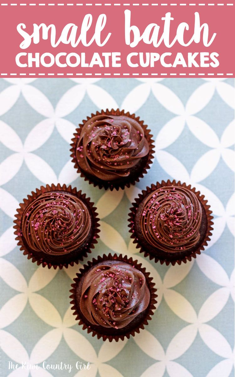 Small Batch Chocolate Cupcakes Recipe With Images Cupcake