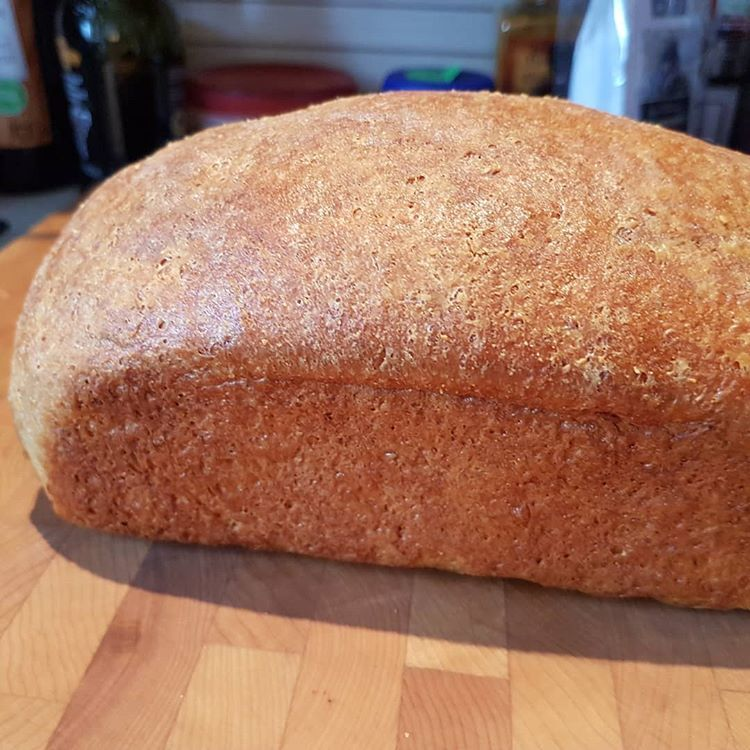 O M G I Did It I Created A Delicious Low Carb Bread That Tasted Just Like The High Carb Shit It Has Low Carb Bread Low Carb Keto Recipes Vital Wheat Gluten