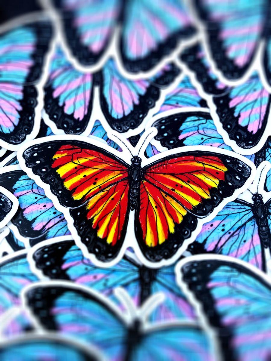 daintyfly butterflies in 2020 butterfly wallpaper