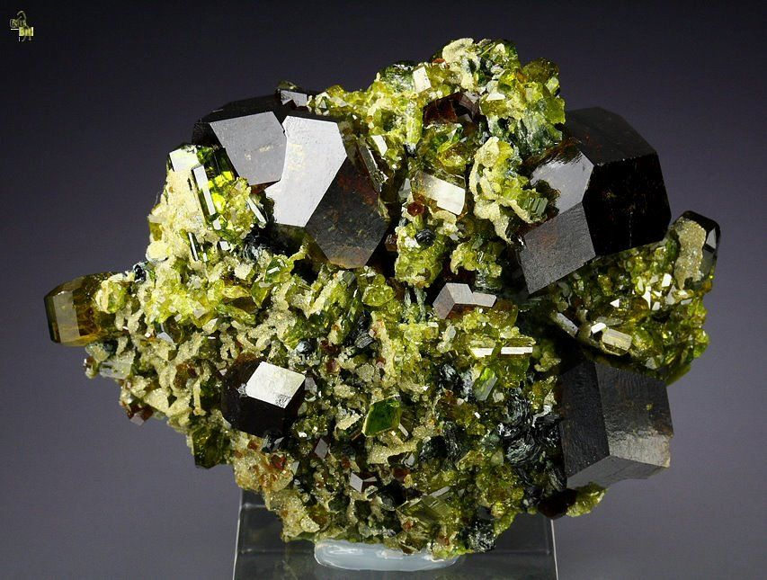 MIXED MINERALS Andradite, Epidote, Clinochlore & Diopside  Garnet var. Andradite with Epidote specimen from Spin Ghar range. Spin Ghar is the name of the mountain range that trends along the border between Afghanistan and Pakistan in southern Nangahar Province. Size: 6,3cm x 4,7cm (crystals up to 20mm).  Photo: Nadya Georgiva.  Collection: Quebul Fine Minerals.