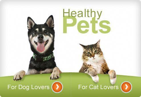Discount Nutrition Store Nutrition101Class Pet health