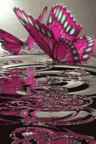 Pink Butterflies On Water Live