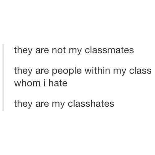 Sometimes The People In Your Discussion Group Are Subpar Tumblr Funny Funny Quotes Student Humor