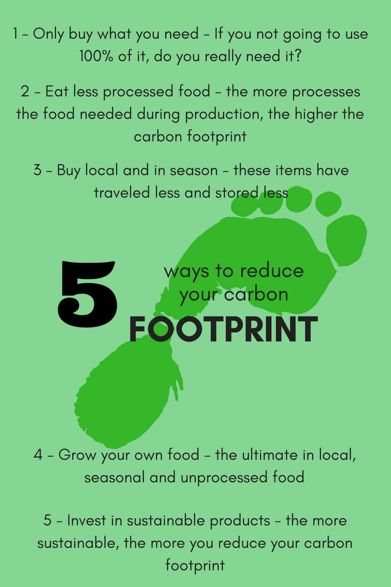 5 Ways To Reduce Your Carbon Footprint Carbon Footprint Carbon Green Living Tips