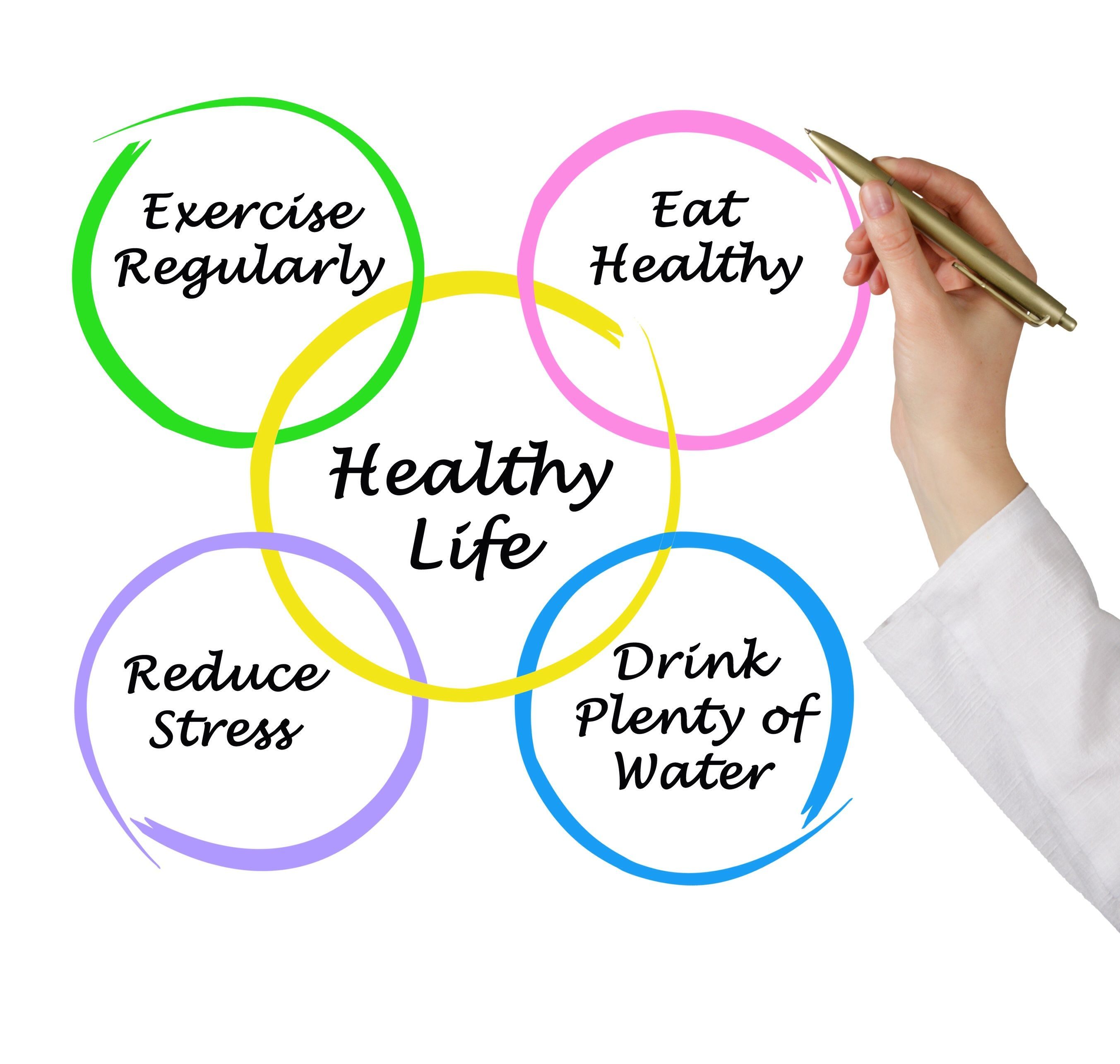 Mindmap Of Healthy Life  Healthy  Healthy Lifestyle Healthy  Mindmap Of Healthy Life