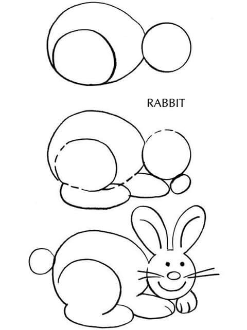 How to draw rabbit