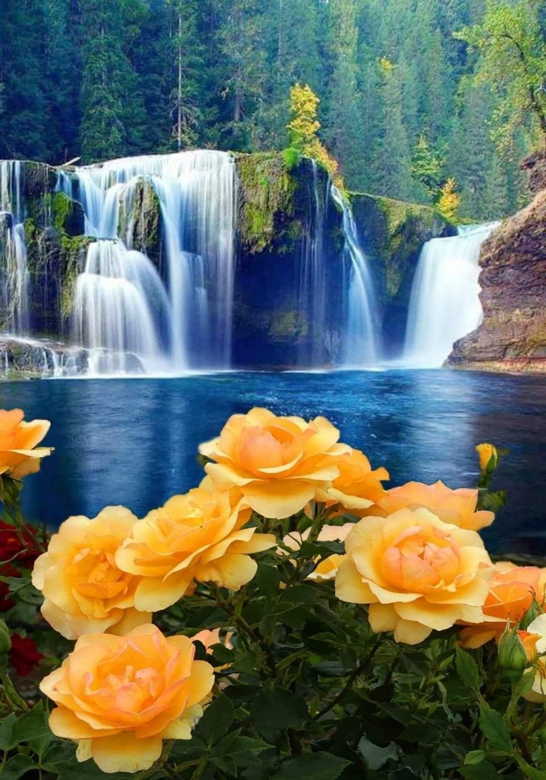Pin By Ria On 1 A File General Beautiful Flowers Wallpapers Beautiful Landscapes Beautiful Nature