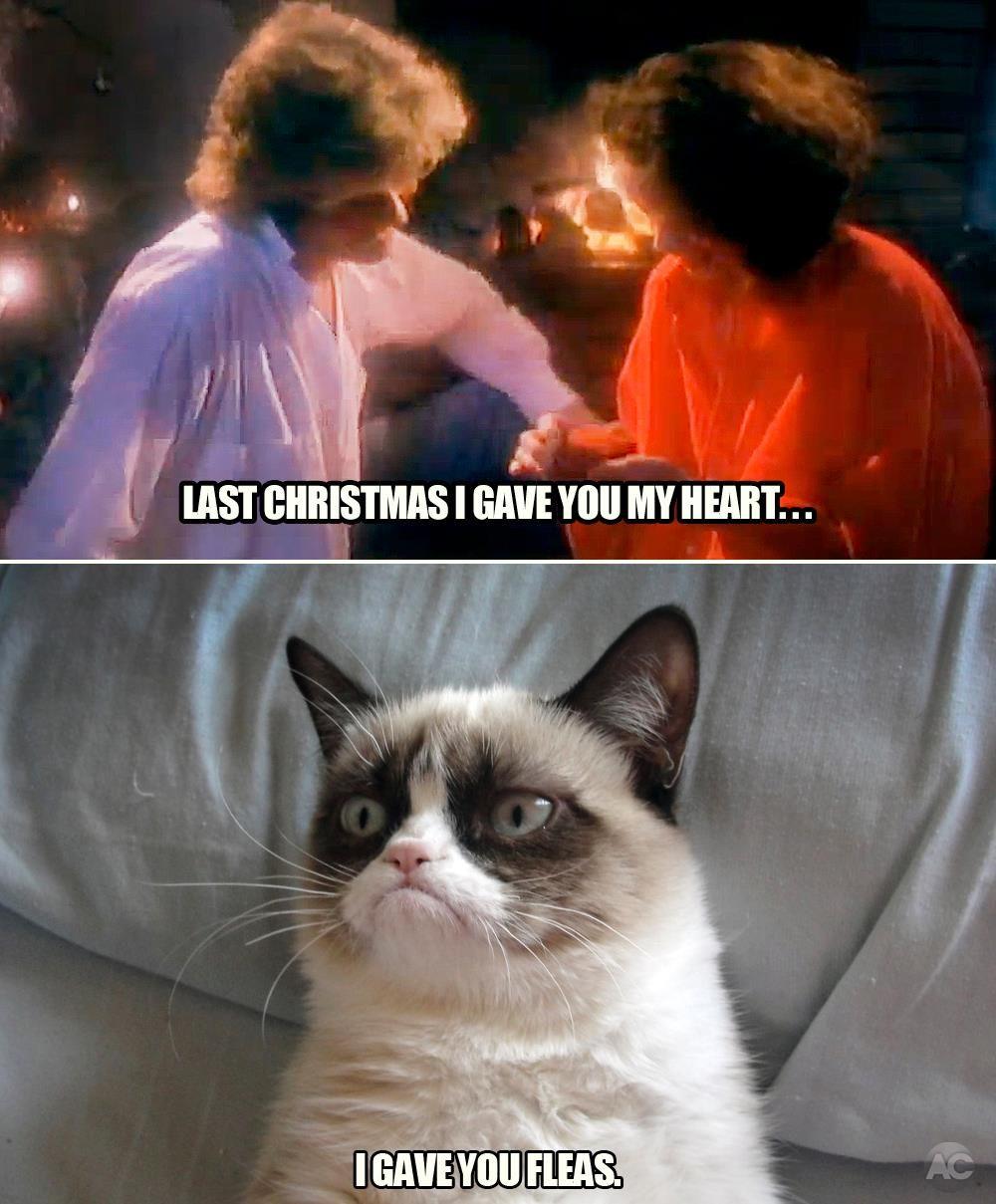 Last Christmas... Funny grumpy cat memes, Grumpy cat
