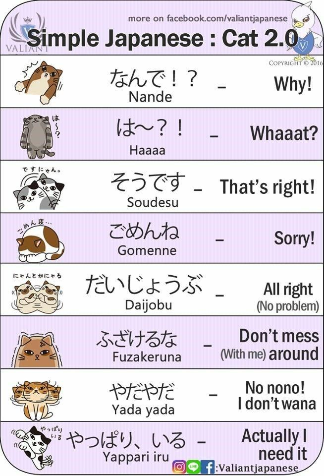 Learn Simple Japanese With Funny Cartoons #relationships