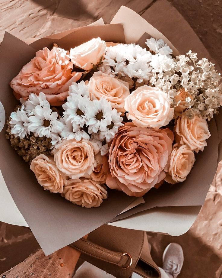 Pin by Gabriella on Bloom in 2020 Pretty flowers