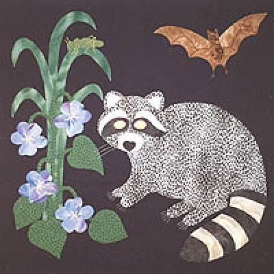 Raccoon Block Wool Applique Animal Quilts Applique Quilts