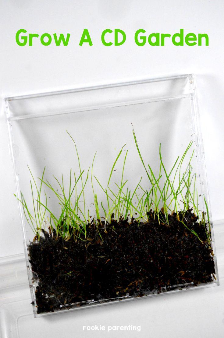 Grow A CD Gardent