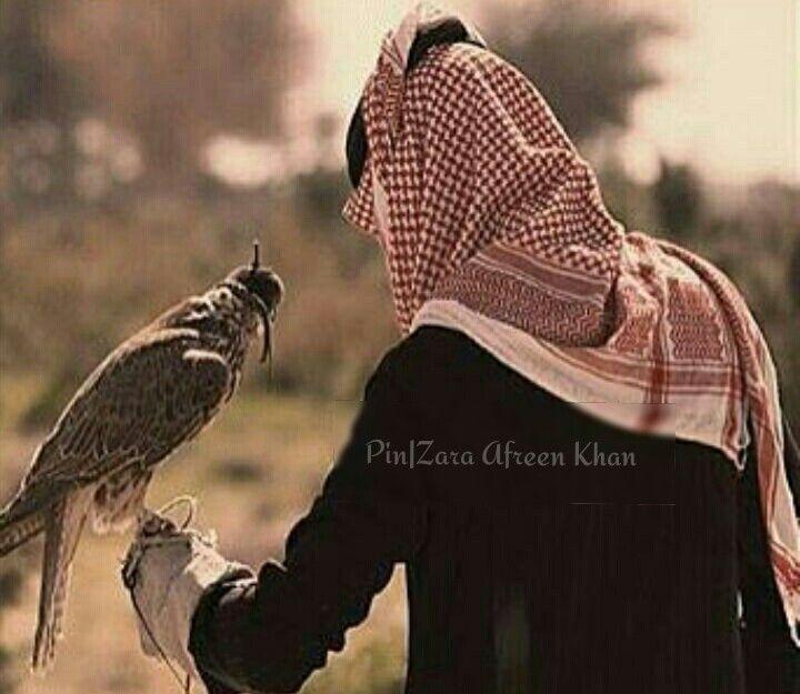 Zara Afreen Khan Boys Dpz Arab Men Animals