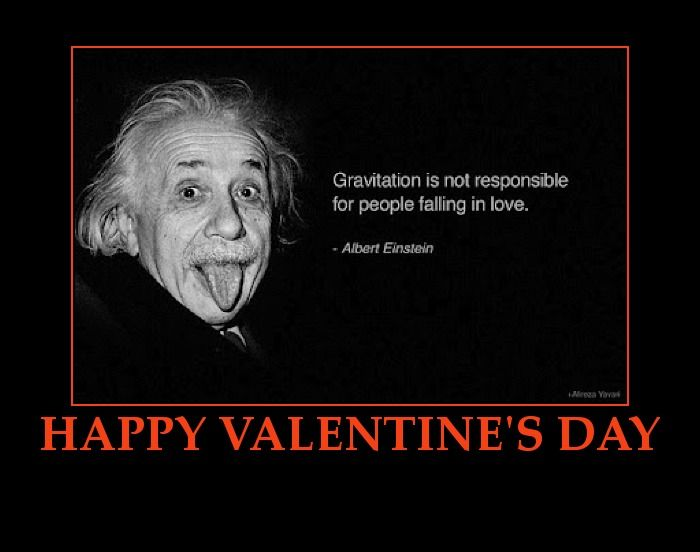 February Holiday Roundup Do Groundhogs Fall In Love Funny Valentines Day Quotes Happy Valentine Day Quotes Valentines Quotes Funny