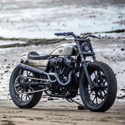 Sportster Harley Davidson Coluche