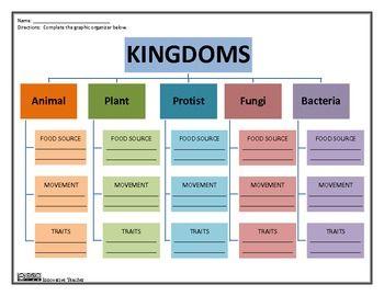 Kingdoms Science Graphic Organizer Science Lessons Elementary Graphic Organizers Elementary Science Activities