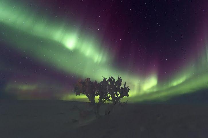 Auroras boreales desde la península de Kola, Rusia.