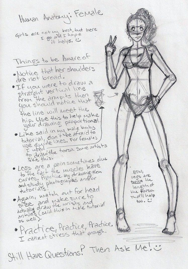 Female Anatomy Tutorial by shoujoartist | Jus Tutorials | Pinterest ...