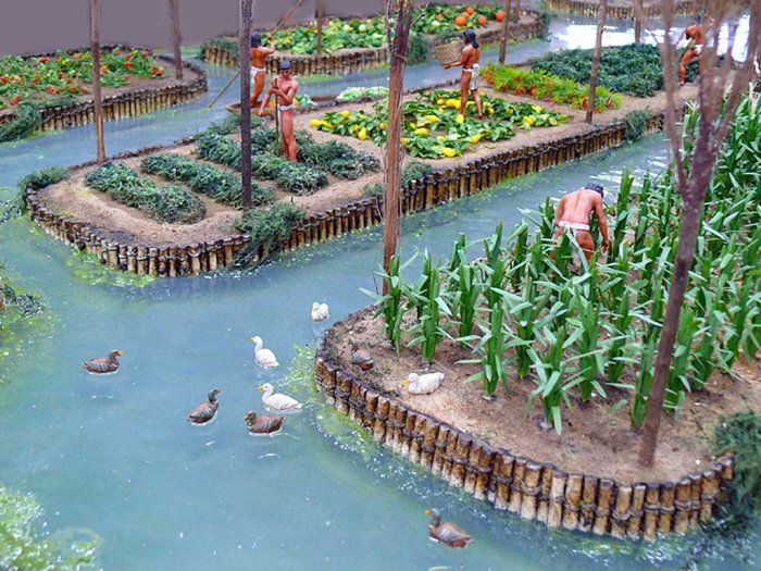 Chinampas Artificial Islands Created By The Aztecs To