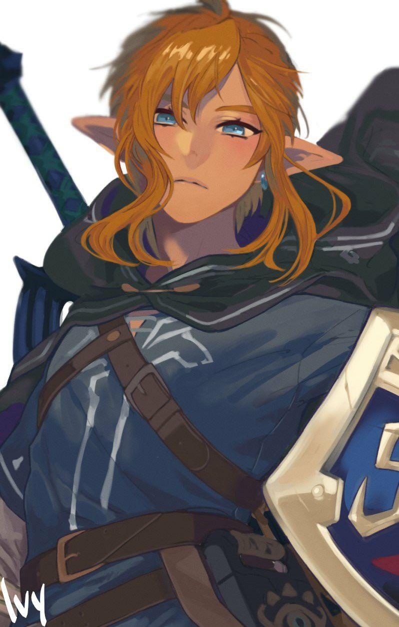 Legend Of Zelda Breath Of The Wild Art Link Hyrule S Hero Botw Ivy Xo Xo The Legend Of Zelda Breath Of The Wild Zelda