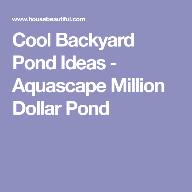 This Is What a Million-Dollar Backyard Pond Looks Like ...