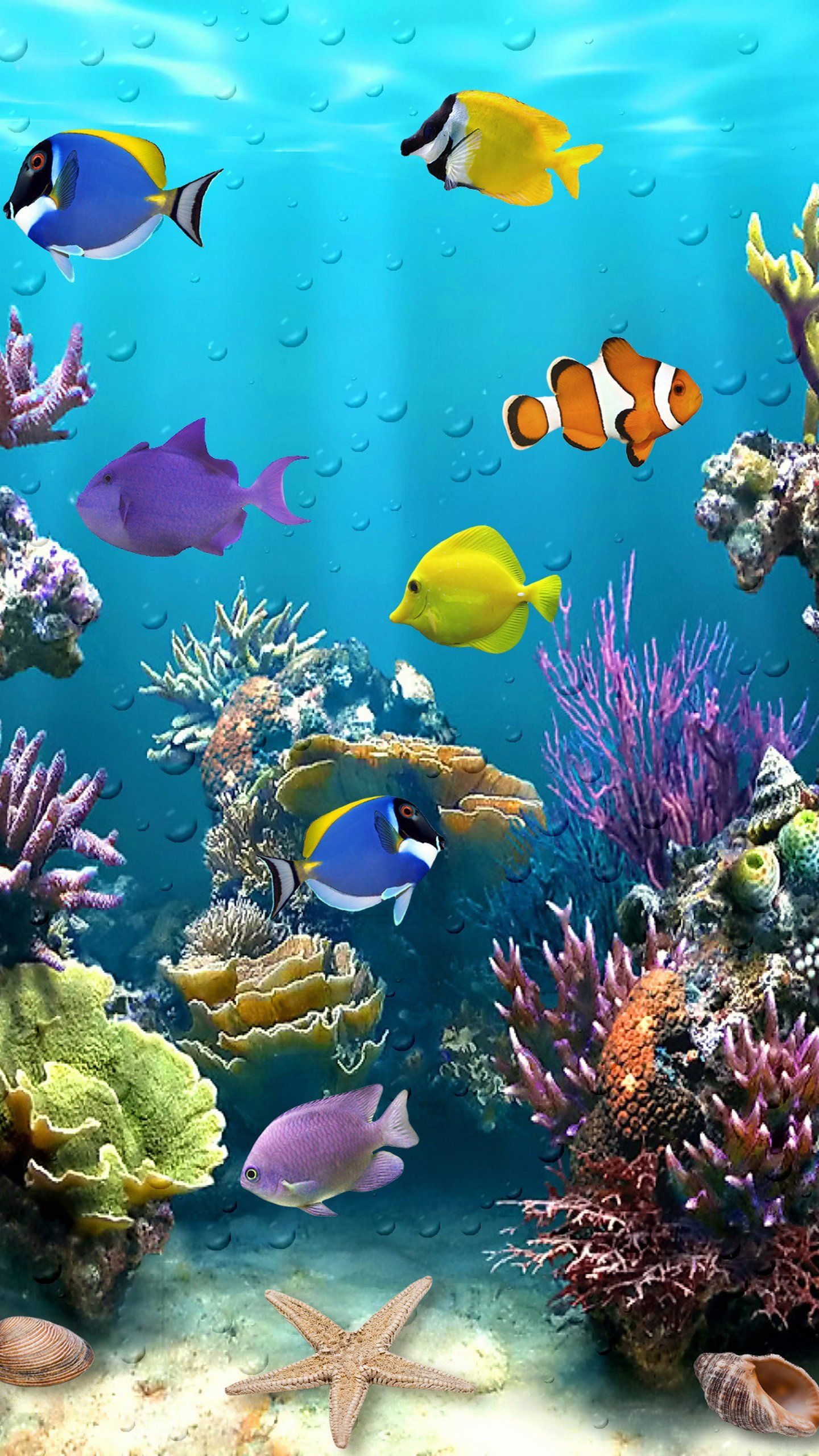 Beautiful Fish Tropical Animal Wallpaper Fish Wallpaper Underwater Painting