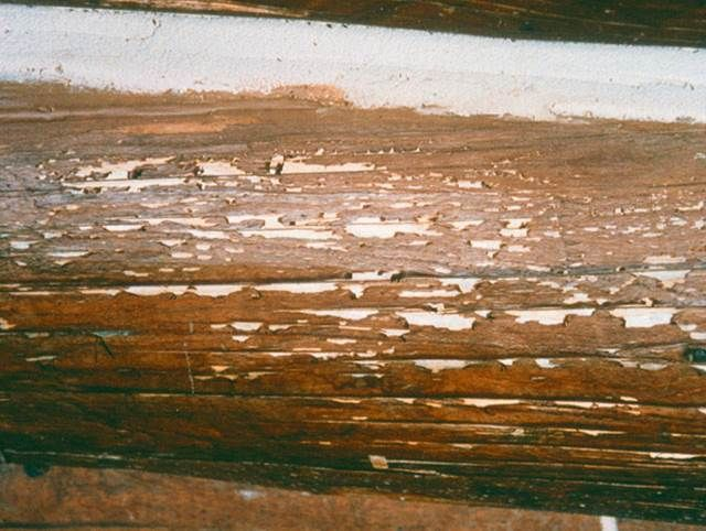 Log Home Maintenance - How To Guide