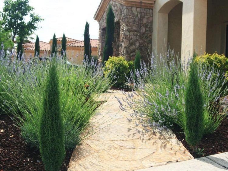 plantes et am nagement jardin m diterran en 79 id es jardin de campagne country garden. Black Bedroom Furniture Sets. Home Design Ideas