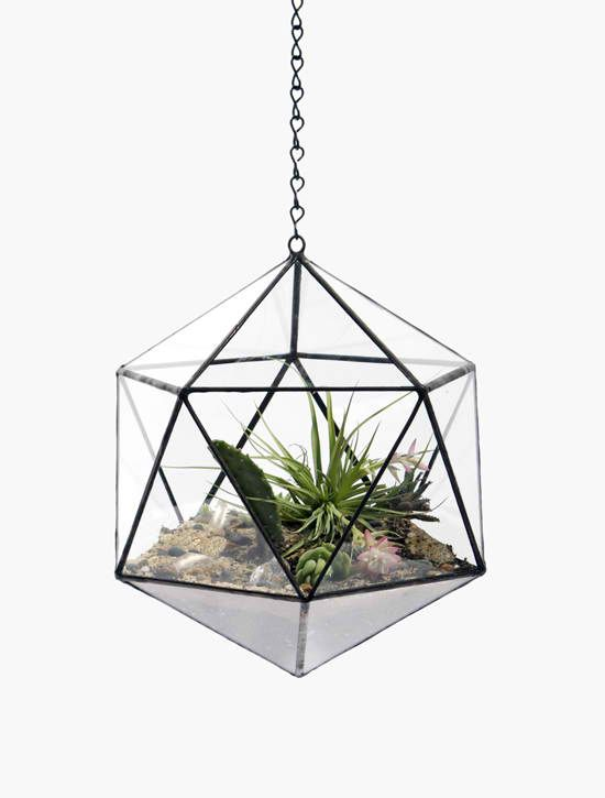 Handmade Hanging And Table top plants Terrariums | 1 Decor