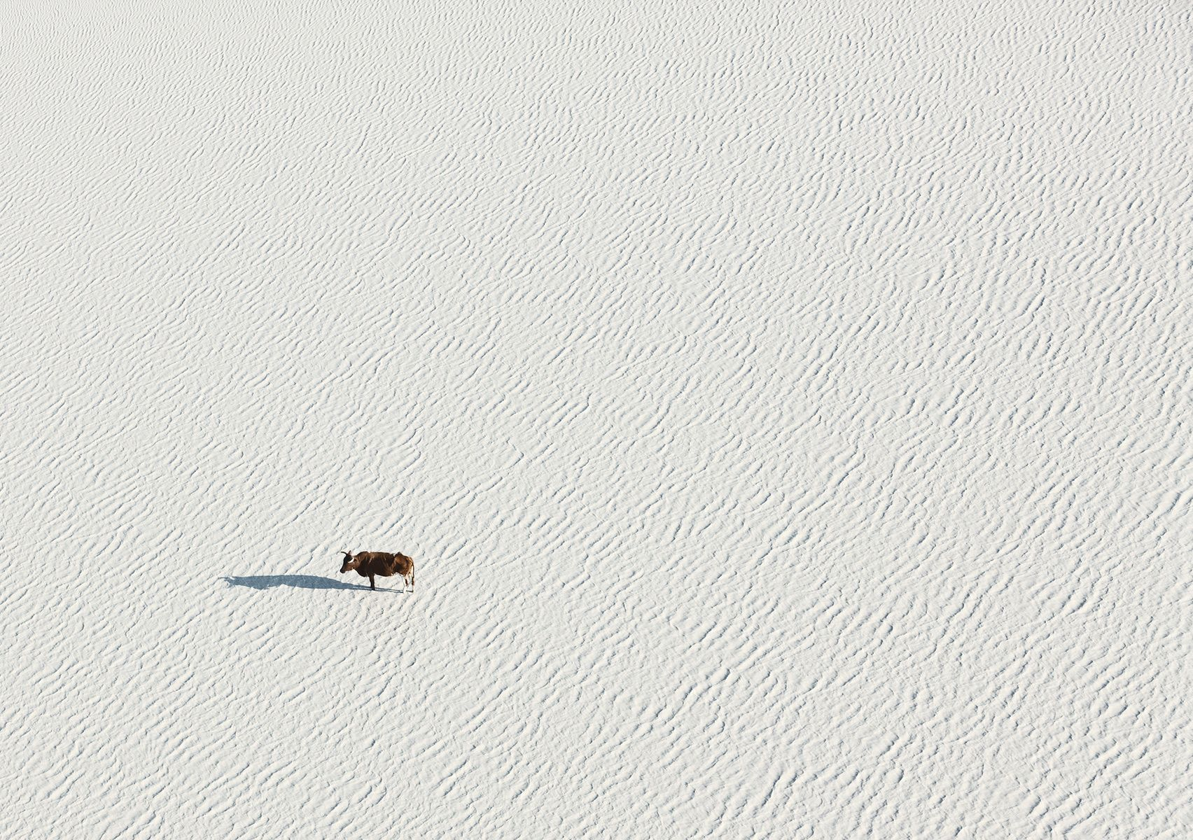 Zack Seckler   Photographer - Aerial Abstracts