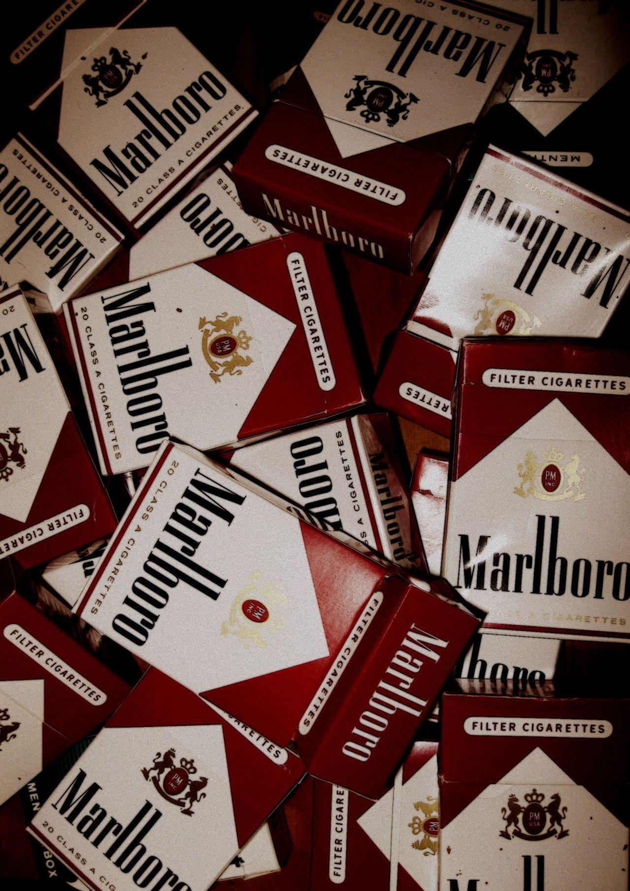 Frolicsome Smoke Photo Art Kouření, Citáty a Pozadí