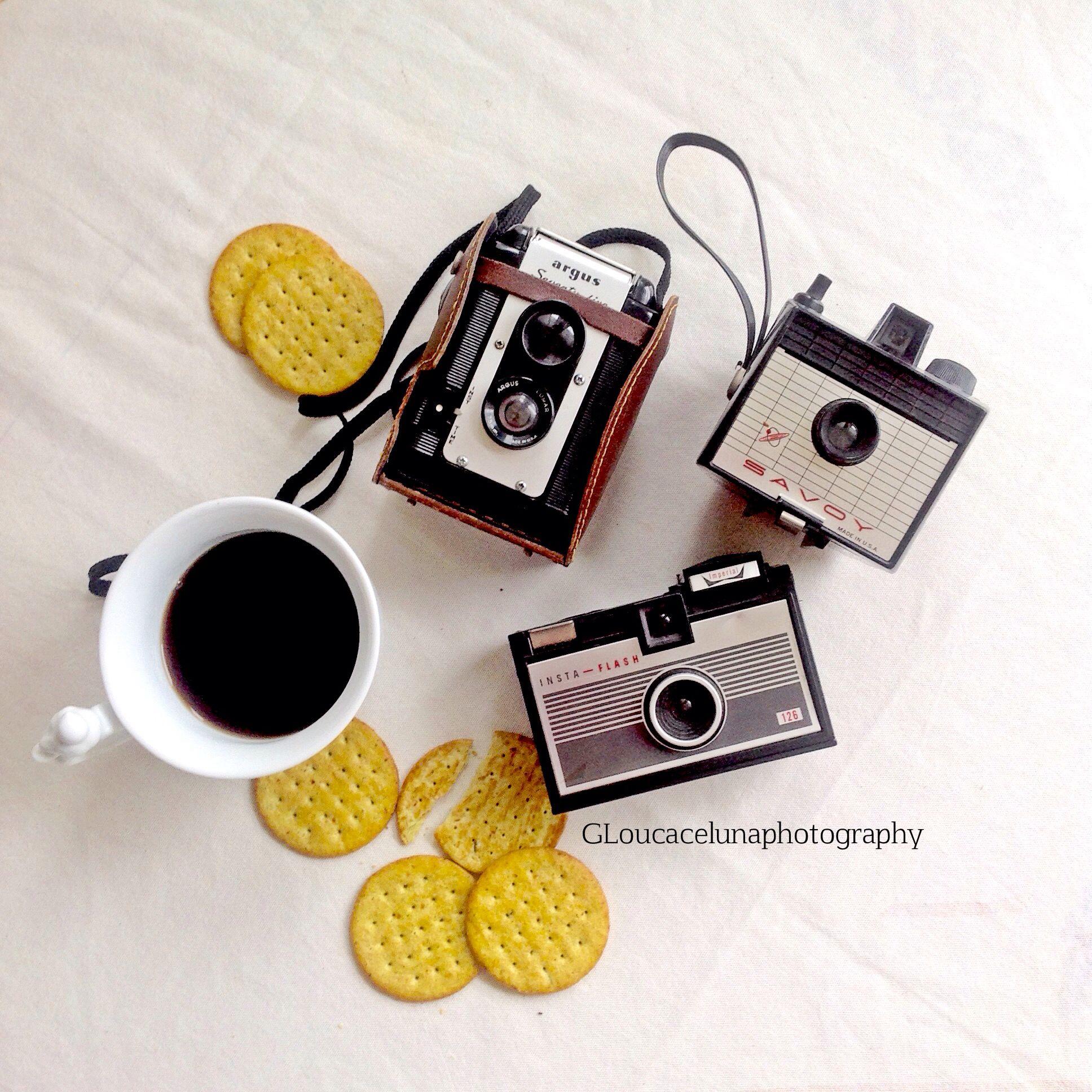 Vintage Cameras. GLoucacelunaphotography