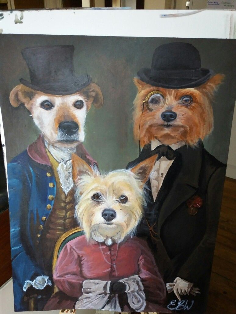 Three dogs in clothing- by Emily Willmott