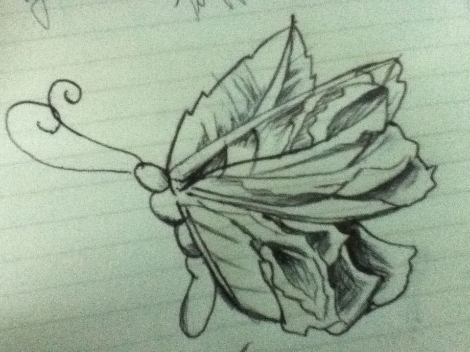 Butterfly meets a rose