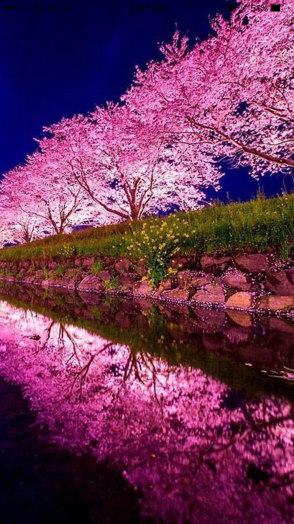Spring In Japan Nature Photography Beautiful Landscapes Beautiful Nature