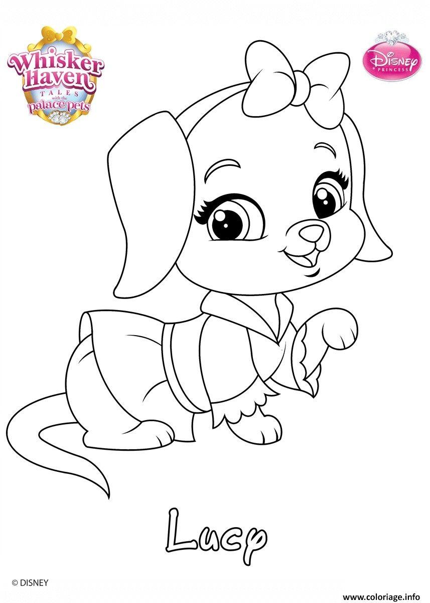 Coloriage Des Animaux Des Princesses en 5  Coloriage